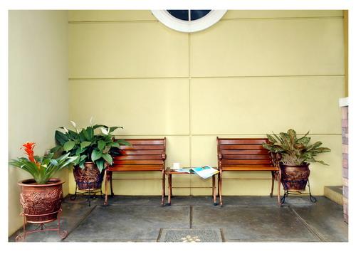 Teras rumah yang nyaman memadukan tempat duduk sekaligus tanaman di